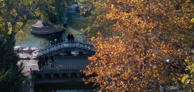 Kuğulu ve Japon Parkı Sonbahar Renkleriyle Süslendi