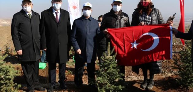 Konya'da Öğretmenler İçin Hatıra Ormanı Oluşturuldu