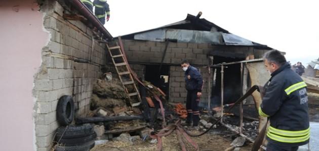 Konya'da Çıkan Yangında 38 Küçükbaş Telef Oldu
