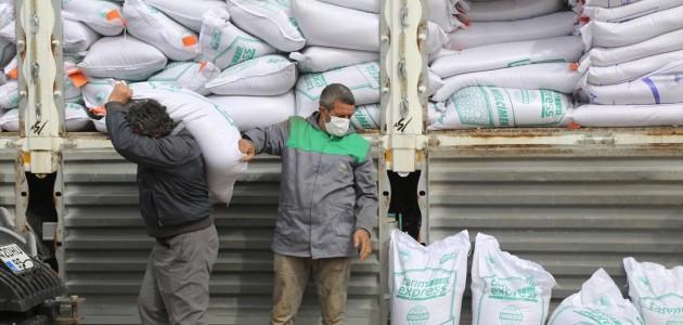 Konya'da 200 ton sertifikalı yerli mercimek tohumu çiftçilere dağıtıldı