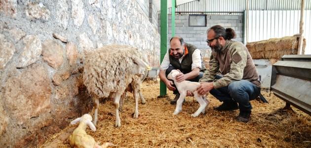 İki Kardeş Kariyerlerini Bırakıp Çiftlik Sahibi Oldular