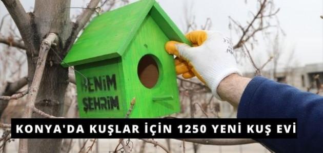 Konya Büyükşehir Belediyesi'nden Kuşlar İçin Yuva