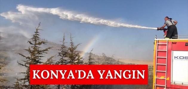 KONYA'DA YANGIN